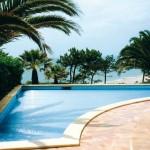 basen z palmami