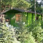 domek sauny w kolorze zielonym
