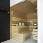 sauna z drzwiami ze szkła