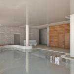 basen prywatny projekt wnętrza basenu wizualizacja