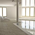 basen wewnętrzny wizualizacja projektu architektonicznego